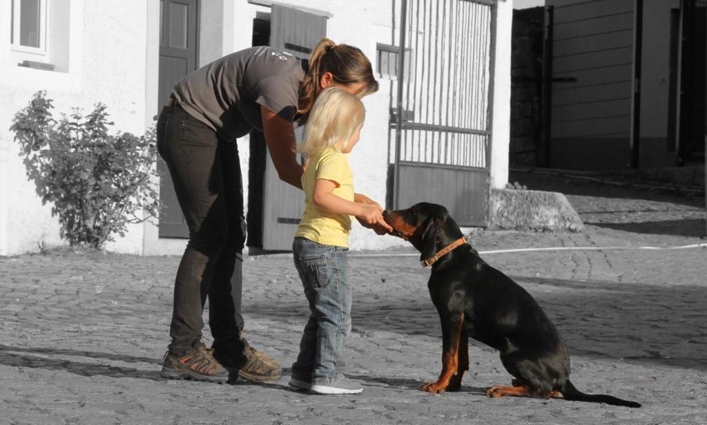 Kinder beim Sicherheitstraining mit Hunden