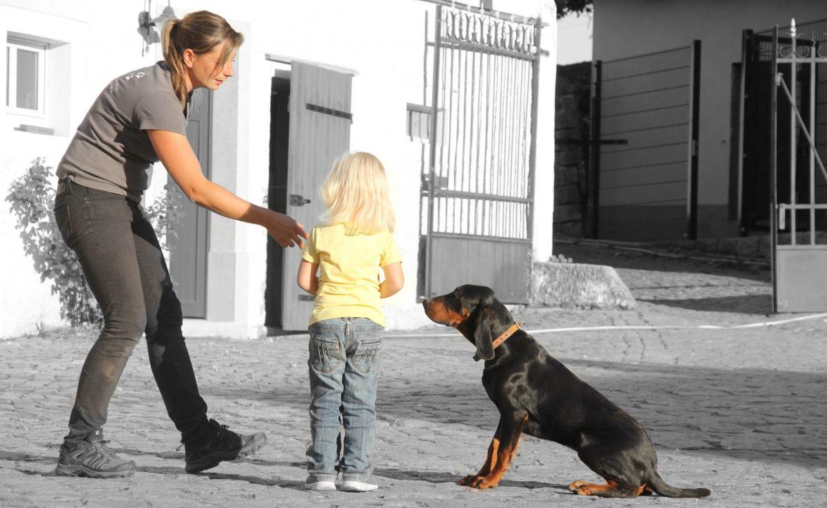 Hundeberaterin_Ines-Zuschke_KSicherheit_01