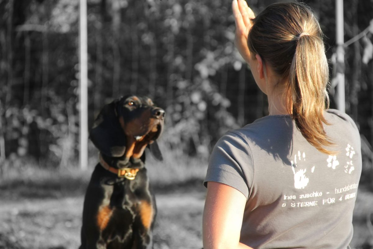 Hundeberaterin_Ines-Zuschke_Mittelschule-02